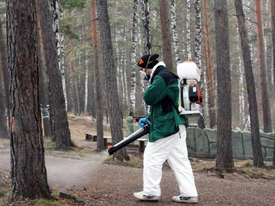 Противоклещевая обработка парков началась в Хабаровске