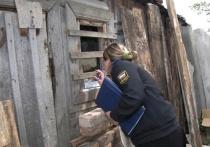 Житель Тверской области нарушал закон в своём сарае
