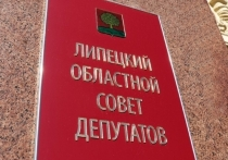Дополнительные выборы в Липецкий областной Совет пройдут 14 апреля