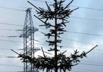 Официальные госорганы не подтвердили «МК» информацию телеграм-канала Baza об обнаружении шести устройств, похожих на бомбу, на Троицкой ЛЭП в пригороде Магнитогорска