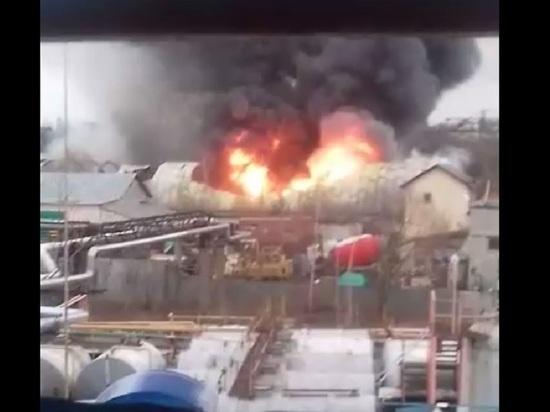 Пожар в Обнинске не охватил ядовитые и взрывоопасные вещества