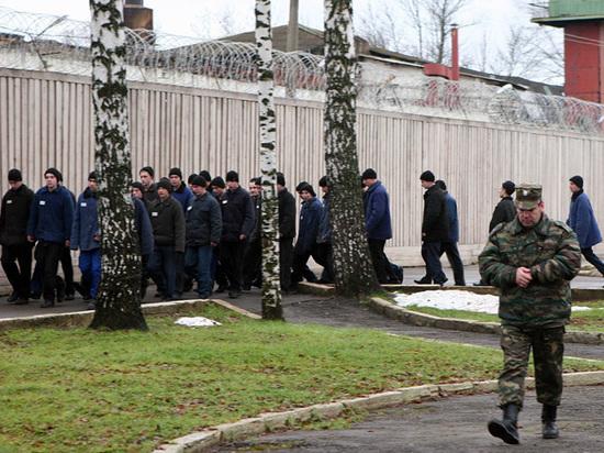 В российских тюрьмах будут лечить по-новому: приедут поезда здоровья