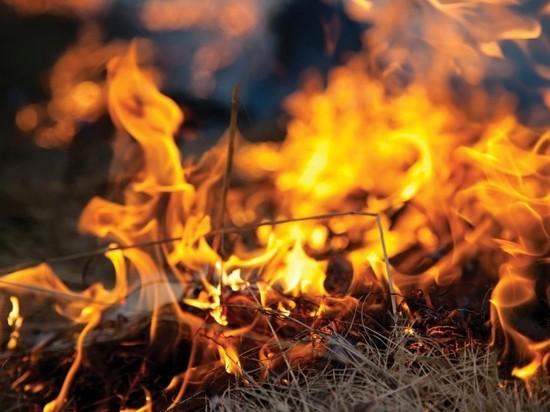 В Мордовии официально объявлен пожароопасный сезон