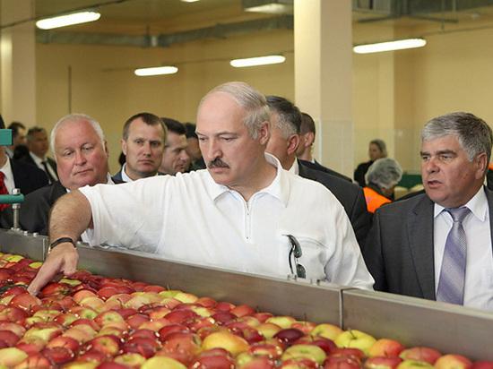 Россия жестко ответила на нефтяной демарш Лукашенко: ударила по продовольствию