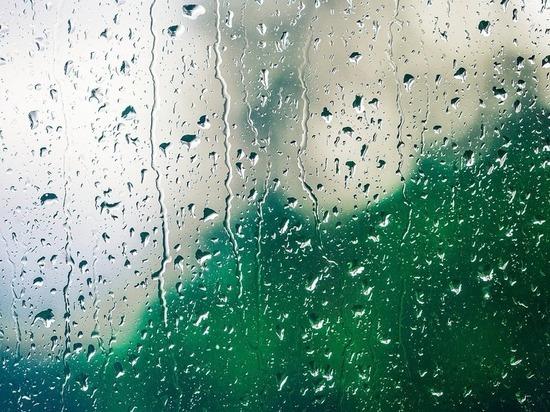 Прогноз погоды на субботу: волгоградцев ожидают дождь и гроза при +19°С