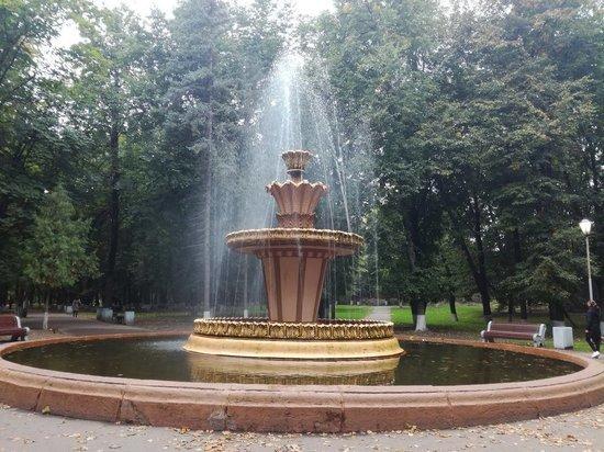 В Пскове отремонтируют фонтаны в Ботаническом саду