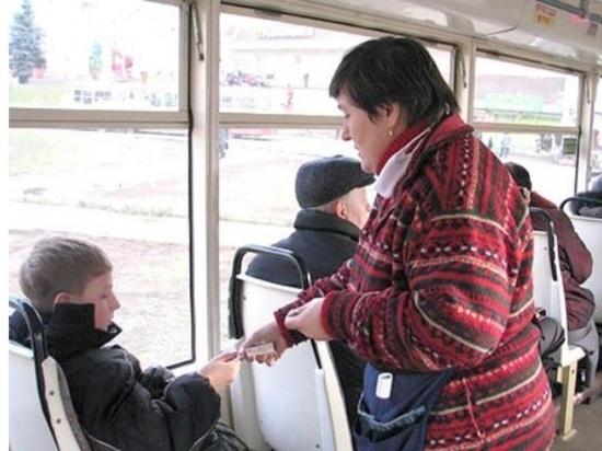 В маршрутках Ярославля могут ввести льготный проезд