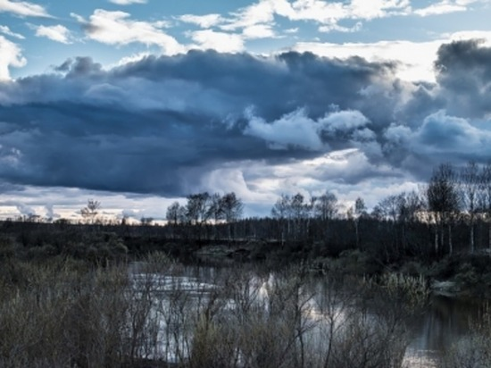 В начале недели в Смоленской области все еще будет прохладно