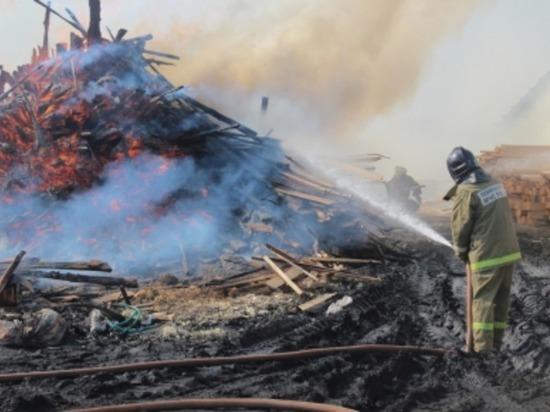 В Смоленской области горели заготовки леса
