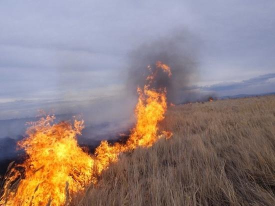 Пострадал чабан и погиб скот на двух сгоревших стоянках в Забайкалье