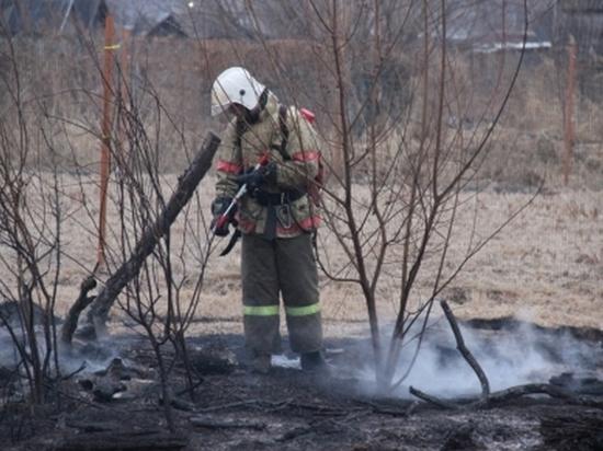 В пригороде Хабаровска пал травы уничтожил 49 дач