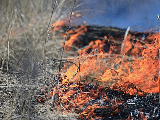 В Чувашии дачница задохнулась, сжигая сухую траву