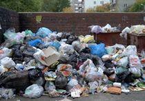 СМИ поведали о возможной остановке работы мусорных операторов в России