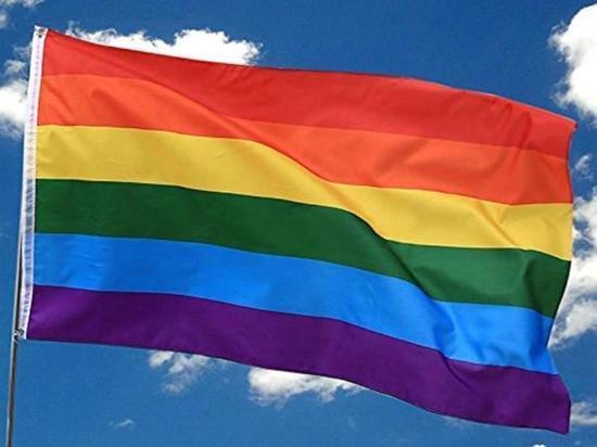 В ЕСПЧ обжалован запрет на проведение гей-парада под Псковом