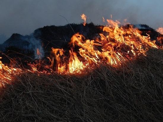 Калмыцкие пожарные в выходные тушили траву и мусор