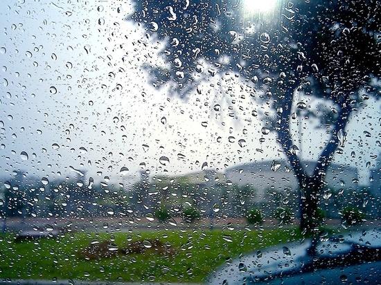 В Воронеже сохранится пасмурная и дождливая погода