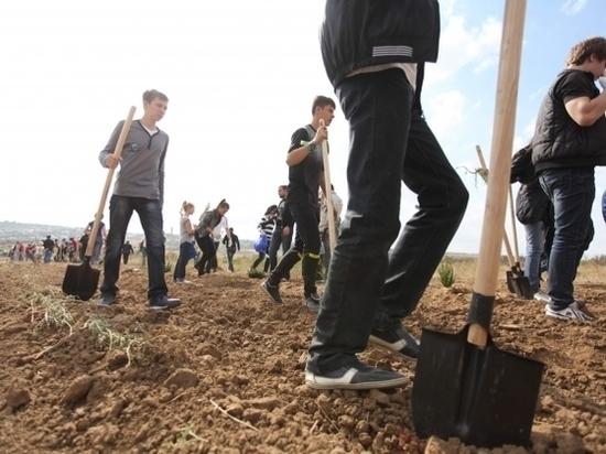 Молодежь предлагает концепции развития территорий Волгоградской области