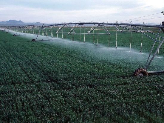 Аграрии Калмыкии готовят к затоплению лиманы