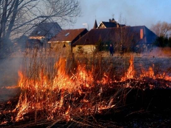 Минувшие выходные в Алтайском крае стали рекордными по числу пожаров