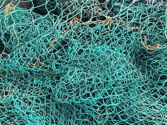 В Подмосковье утонул рыбак, запутавшийся в собственных сетях