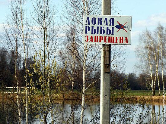 В Ярославской области ввели сезонные ограничения на лов рыбы
