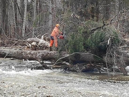Спасатели Хабаровского края расчищают реку Ко от поваленных деревьев