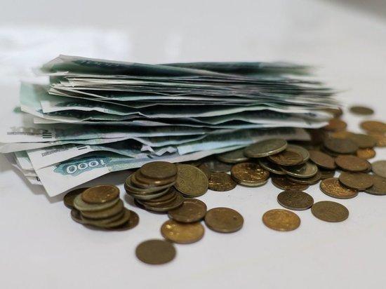 С молотка: совхоз Ведлозерский продают за 42 миллиона