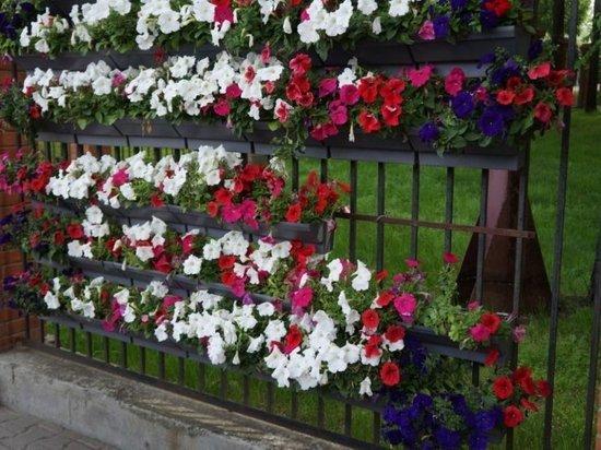 К 9 мая в Хабаровске появятся вертикальные цветочные конструкции