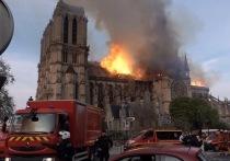 Причину страшного пожара, разрушившего Нотр-Дам, будут официально устанавливать еще долго