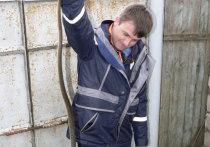 В Темрюке спасатели поймали змею, заползшую в квартиру