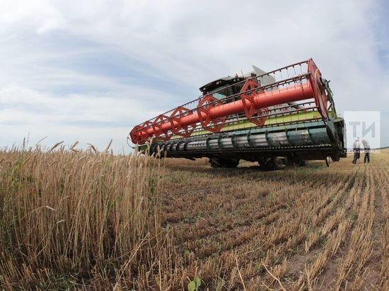В 2019 году сельхозпроизводство в Татарстане выросло на 2%