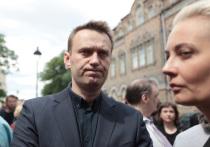 Собранные на несостоявшуюся в прошлом году президентскую кампанию Навального средства - около 350 миллионов рублей - «лихо исчезли в этой черной дыре», утверждает адвокат Виолетта Волкова