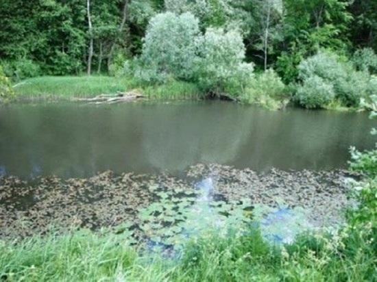 Инженер-механик отделался штрафом за гибель рыбы от свиного навоза в реке под Калугой