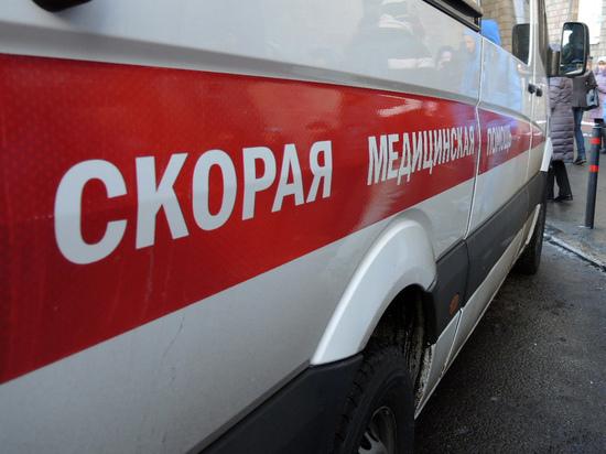 Двое детей погибли при пожаре в Подмосковье: подожгли мебель