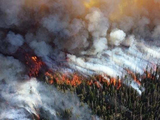 Тушить полыхающие пожары в нацпарке