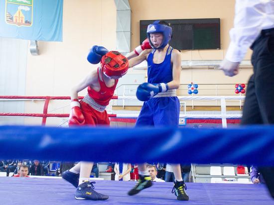 Накануне в Барнауле состоялось открытие первенства СФО по боксу