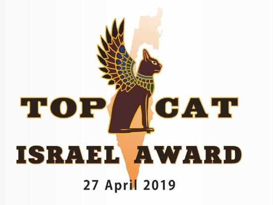 В Израиле пройдет Международная выставка кошек