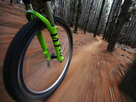 В Саранске 20 апреля откроют велосезон