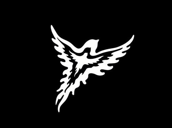 В Мурманской области состоится фестиваль «Птица Баренц 2019»