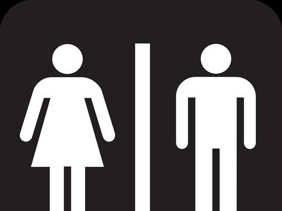 Барнаульский любитель подглядывать в женских туалетах пойдет под суд