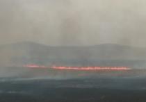 Пожар на 4 тыс га потушили в Александрово-Заводском районе