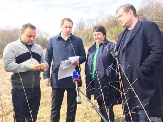 В Смоленской области планируют построить горнолыжный комплекс