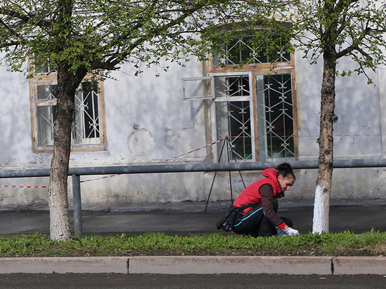 В Подмосковье отказались от побелки деревьев: вредный советский пережиток