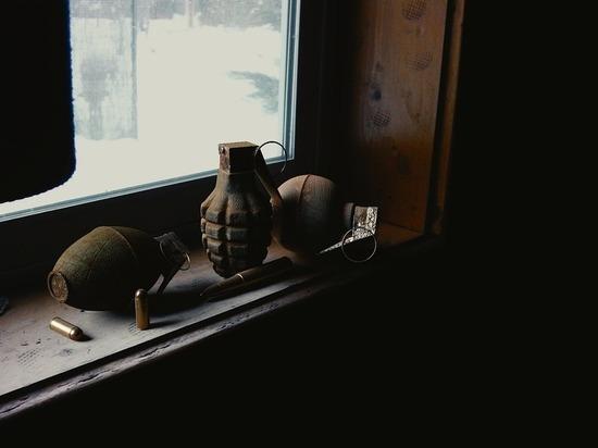 Под Тулой сотрудники МЧС нашли мины и гранаты