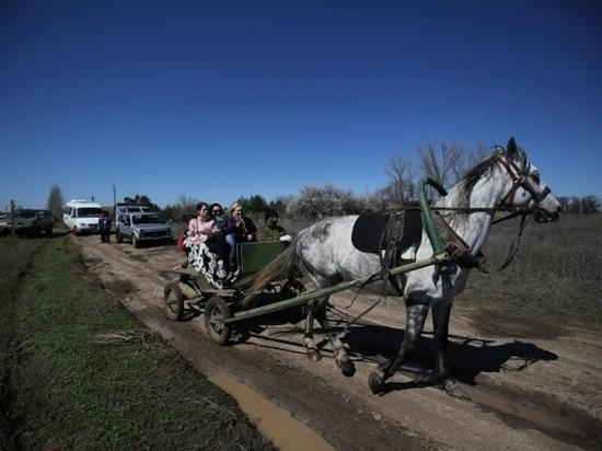 В Волго-Ахтубинской пойме появилась экологическая тропа
