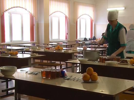 Депутат предложила принять закон о школьном питании: «Уже вся страна обкакалась»