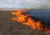 Степной пожар из Китая перешел на приграничное село в Забайкалье