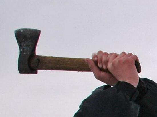 Житель Саракташского района  хотел зарубить соседа топором
