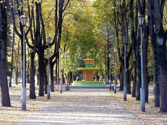 До 15 октября в Пскове планируют отремонтировать лестницу в Ботаническом саду