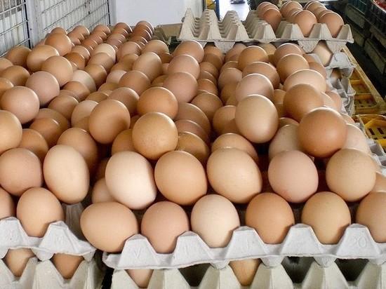 Рыбу, пчелопакеты и яйца не пустили в Оренбургскую область